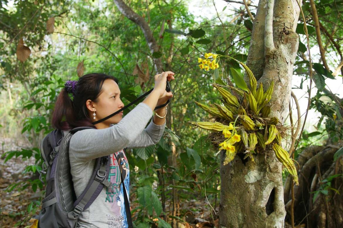 orchid-documentation-empowers-women-in-kayin-state-1582116058