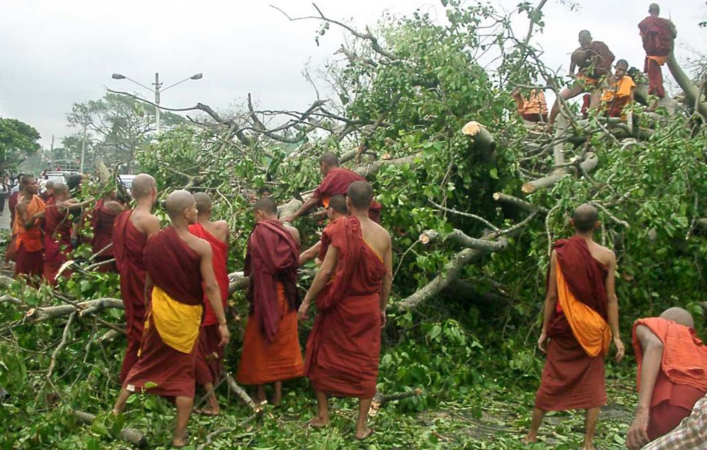 Buddhist monks attempt to move an uprooted tree in downtown Yangon on May 5, 2008. (AFP)