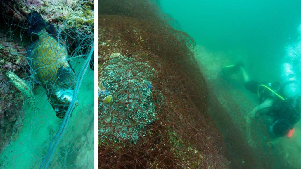 Marine life in the Myeik Archipelago smothered with discarded fishing nets. (Thanda Ko Gyi | Myanmar Ocean Project)