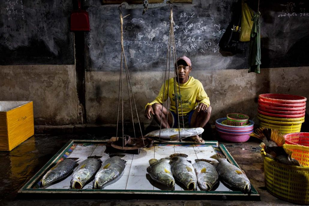 A vendor at Bogale Township's Ka Don Ka Ni village displays fish caught illegally in the nearby Meinmahla Kyun Wildlife Sanctuary. (Hkun Lat | Frontier)