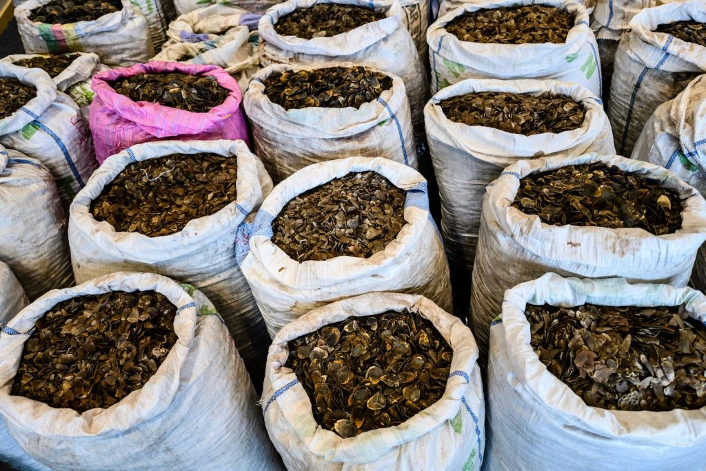 Seized endangered pangolin scales are displayed during a press conference at the Kwai Chung Customhouse Cargo Examination Compound in Hong Kong. (AFP)