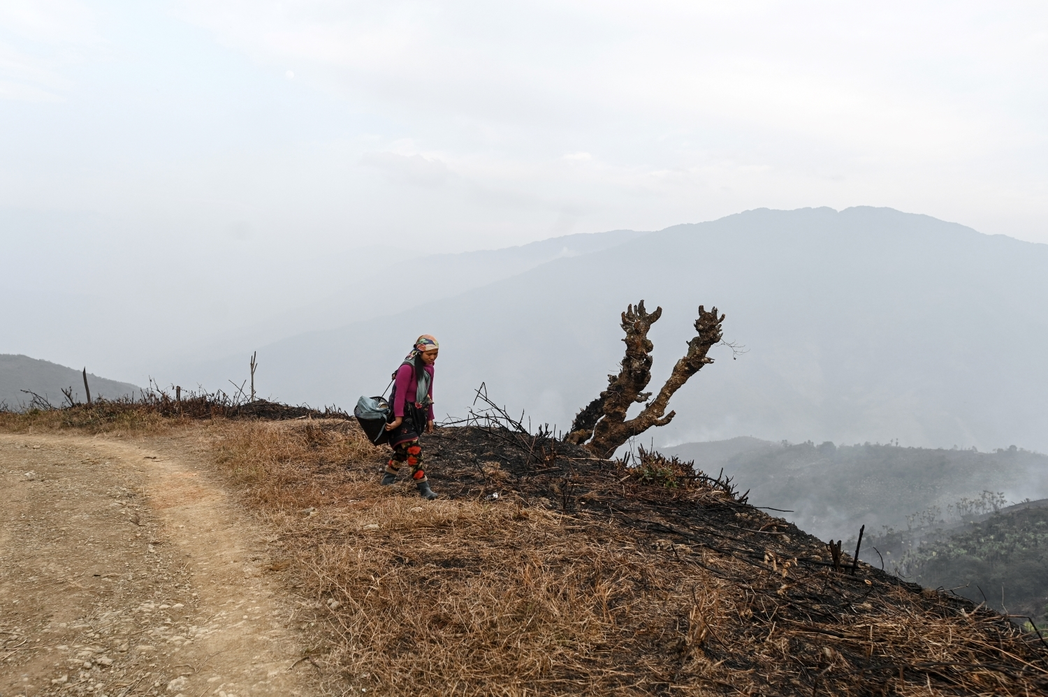 A woman walks to her farm on February 7 this year near Yan Gone village, Lahe Township in Sagaing Region's Naga Self-Administered Zone. (AFP)