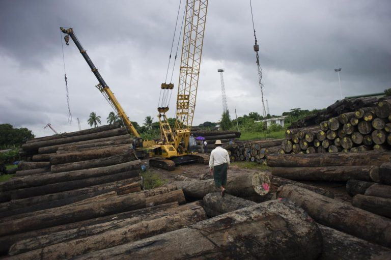 20000-tonnes-of-logs-seized-in-five-years-says-kachin-minister-1582227051