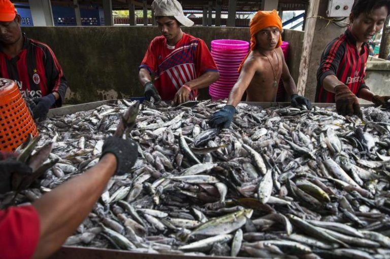 in-rare-demand-myanmar-migrants-push-for-better-pay-benefits-at-thai-seafood-firm-1582188668