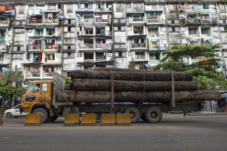 myanmar-makes-record-seizures-of-illegal-timber-1582219871