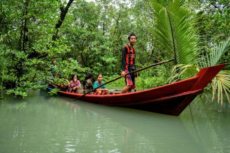 Residents search for crab and prawns in the Kanyin Chaung community forest in Tanintharyi Region's Thayetchaung Township. (Frontier)