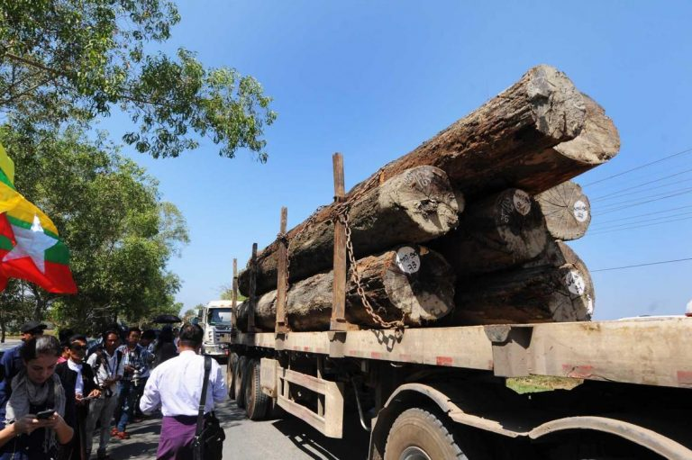 timber-sector-wants-mte-to-get-the-chop-1582187526